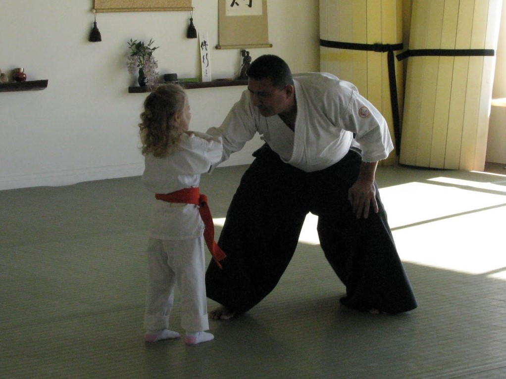 aikido picture